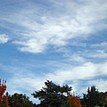 Blue Sky White Clouds Autumn Prints by Baslee Troutman