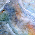 Blue Wolf In Mist by FeatherStone Studio Julie A Miller