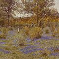 Bluebell Copse by Helen Allingham