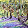 Bluebell Wood by Lynn Presland