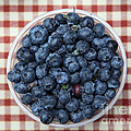 Blueberries - 5d17825 by Wingsdomain Art and Photography