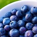 Blueberries by Dane Sigua