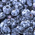 Blueberries  by Kim French