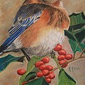 Bluebird And Berries by Roberta Ress