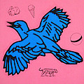 Bluebird On Pink by Steve Fields