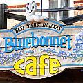 Bluebonnet Cafe by DiDi Higginbotham