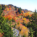 Blueridge Parkway View Near Hwy 215 by Duane McCullough