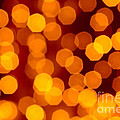 Blurred Christmas Lights by Carlos Caetano