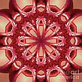 Blushing Flower Kaleid by Deborah Benoit