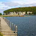 Boardwalk On A Counry Lake by Western Roundup
