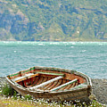 Boat And Wild Flowers By Sea by M Moraes