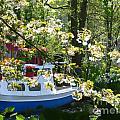 Boat At The Keukenhof by Kim Frank