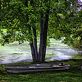 Boat By The Pond 2 by Madeline Ellis