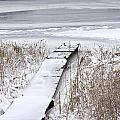 Boat Dock In Winter On A Lake No.0243 by Randall Nyhof