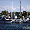 Boat Harbor In Dunkirk New York by Rose Santuci-Sofranko