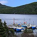 Boat Lineup by Barbara Griffin