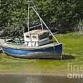 Boat On Banks Of Dee by Andrew  Michael
