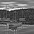 Boating Reflections Mono by Derek Holzapfel
