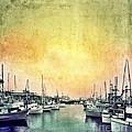 Boats In The Harbor by Jill Battaglia