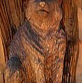 Bobcat Reflections by LeeAnn McLaneGoetz McLaneGoetzStudioLLCcom
