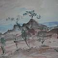 Bodega Head by Edward Wolverton