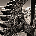 Bodie Ghost Town - Rusted Gear by Gregory Dyer