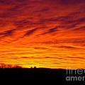 Bold Sunset by Mark Dodd