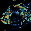 Tb Cosmic Swirl by Ben Upham