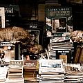 Istanbul, Turkey - Bookkeepers by Mark Forte