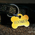 Boomer Gear by Susan Herber