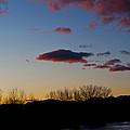 Bosque Del Apache by Larry Gohl