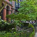 Boston Beacon Hill Street Scenery by Jiayin Ma