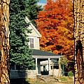 Boston Home Fall 1982 by Noah Brooks