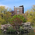 Boston Public Garden Pond In Spring by John Burk