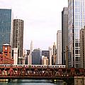 Chicago Skyscraper by Claude Taylor