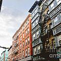 Boston Street by Elena Elisseeva