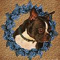 Boston Terrier Love by Smilin Eyes  Treasures