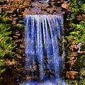 Botanical Garden Falls by Lynne Jenkins