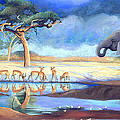 Botswana Watering Hole by Susan McNally