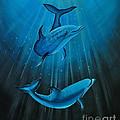 Bottle-nose Dolphins by Preethi Mathi