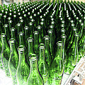 Bottles At A Wine Bottling Factory by Ria Novosti