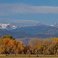 Boulder County Colorado Continental Divide Autumn View by James BO  Insogna