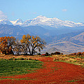 Boulder County Colorado Landscape Red Road Autumn View by James BO Insogna