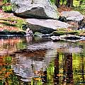 Boulders Along Enders Brook 1 by Albert Seger