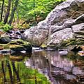 Boulders Along Enders Brook 2 by Albert Seger