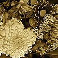 Bouquet In Sepia by Phyllis Denton