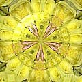 Bouquet Of Roses Kaleidoscope 12 by Rose Santuci-Sofranko