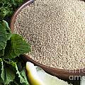 Bowl Of Amaranth Seeds by Charlotte Lake