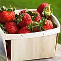 Box Of Strawberries by Federico Arce