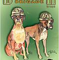 Boxer Brigade Chew Toys by Amelia Hunter